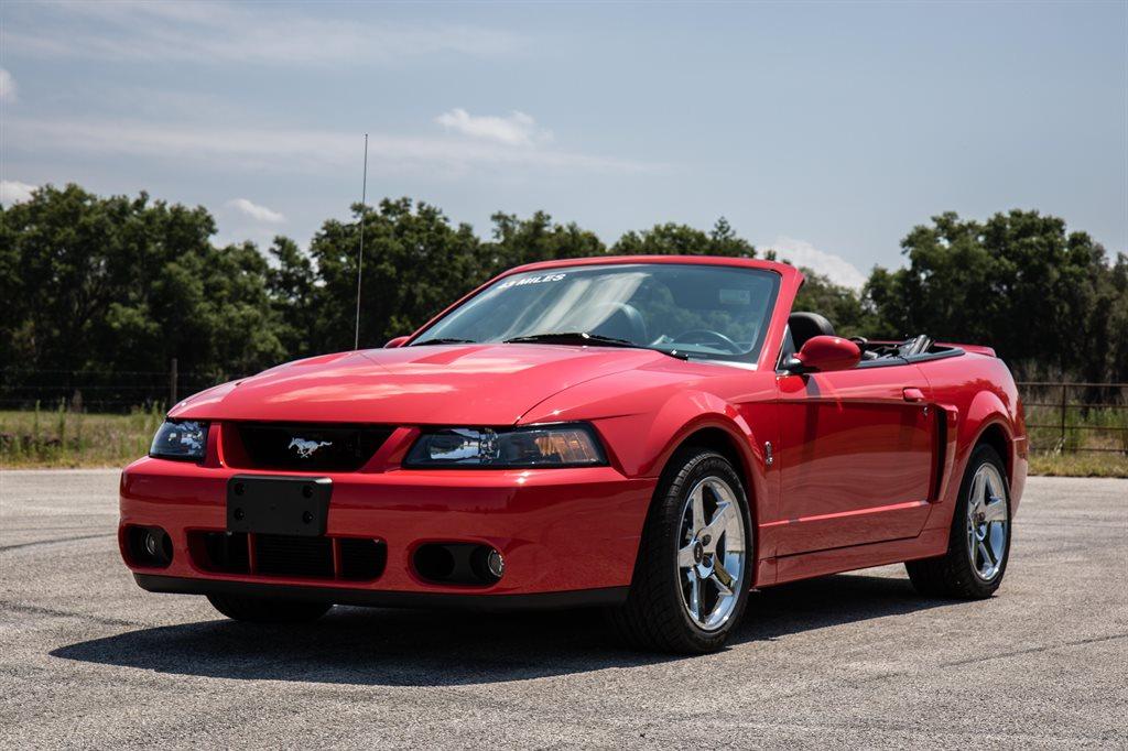 2004 Ford Mustang SVT Cobra photo