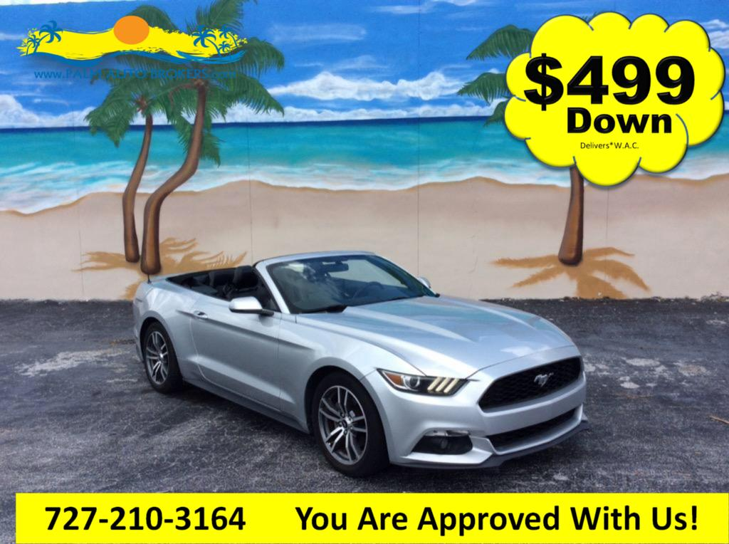 The 2015 Ford Mustang ECO Premium photos