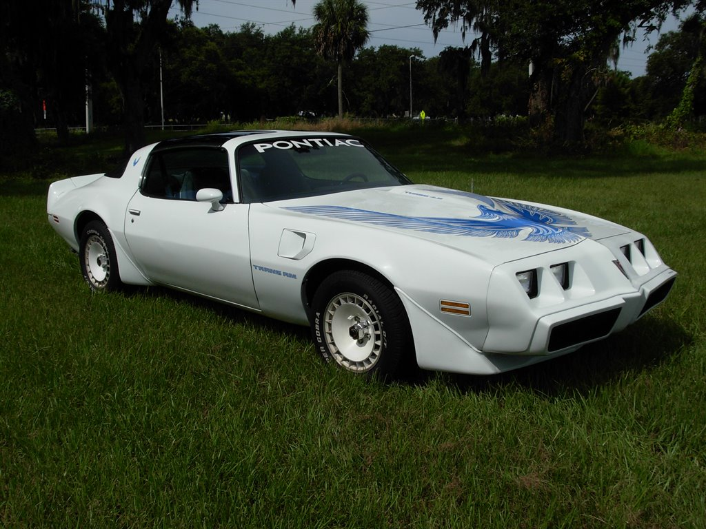 1981 Pontiac Firebird Trans Am photo