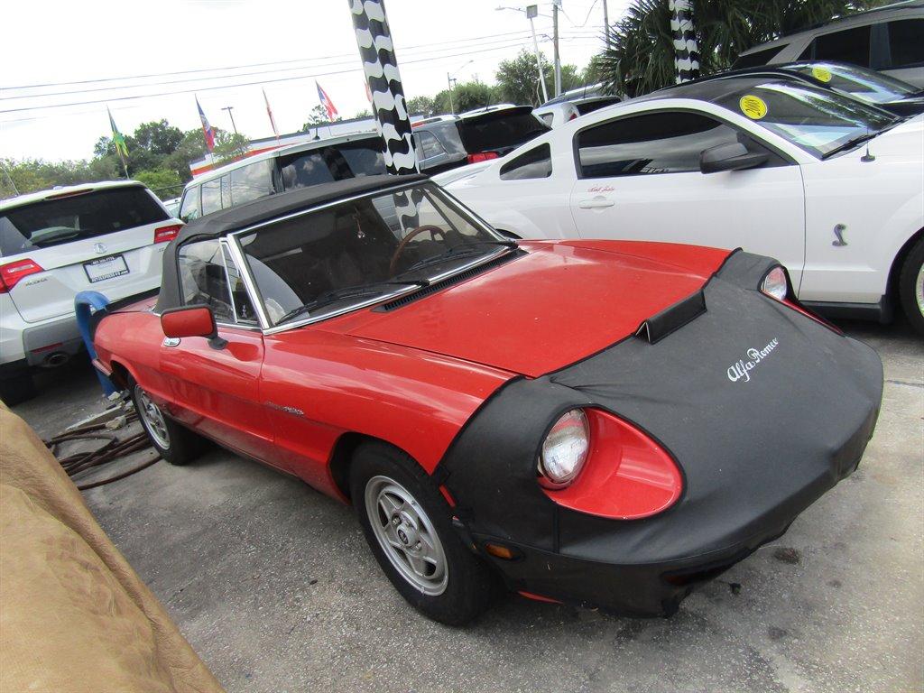 1985 Alfa Romeo Spider Graduate photo