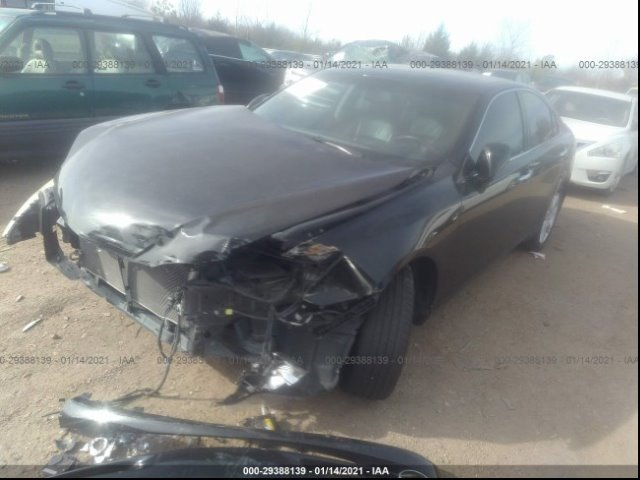 2007 Lexus ES 350 photo